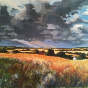 Fields near Sudbury 1 - Owned by Stephanie Schuller